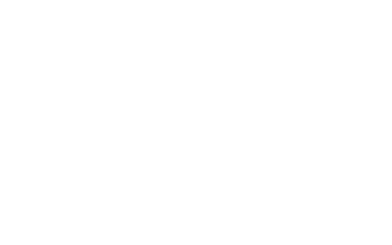 Chayil Women International